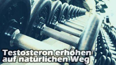 Testosteron erhöhen auf natürliche Weise OHNE Anabolika – 10 Tipps
